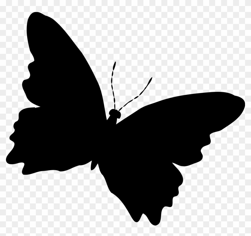Butterfly Silhouette Cliparts Free Download Clip Art - Silhouette Butterfly #23159