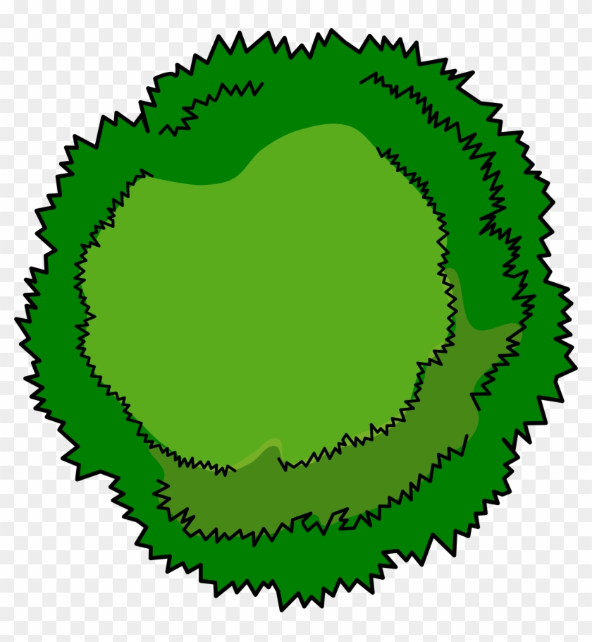 Tree View Clipart - Cartoon Tree Top View #23192