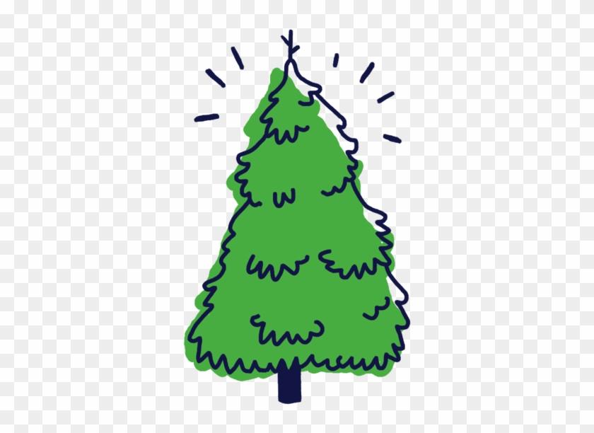Frazier Fir Christmas Tree Clipart - Tree #23240