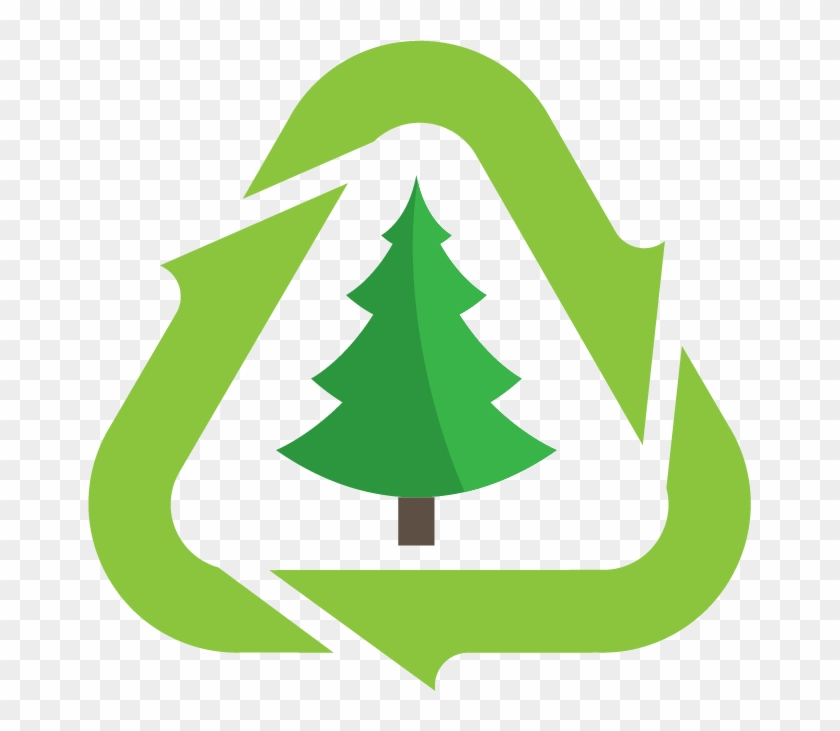 Christmas Tree Disposal - Christmas Tree Recycling #23281