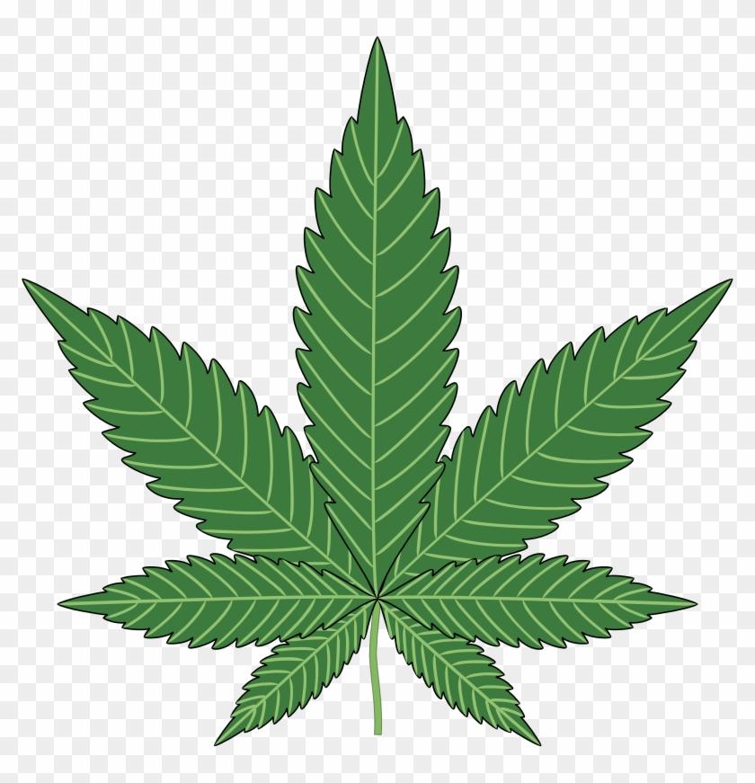 Картинки скачать марихуану мальчик и девочка конопли фото