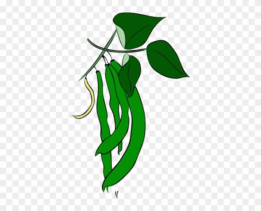 Green Beans Clip Art - Clip Art Green Beans #23632