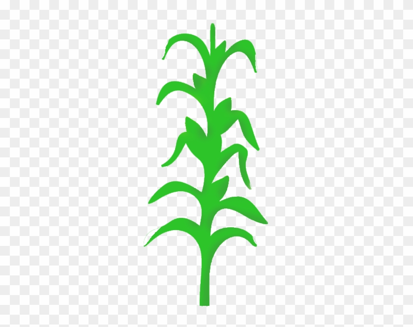 Corn Stalk Images Clip Art - Corn Stalk Png #23761