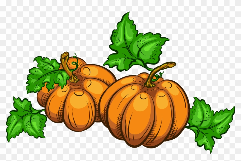 Thanksgiving Clip Art Pumpkins - Pumpkins Clip Art Transparent #23887