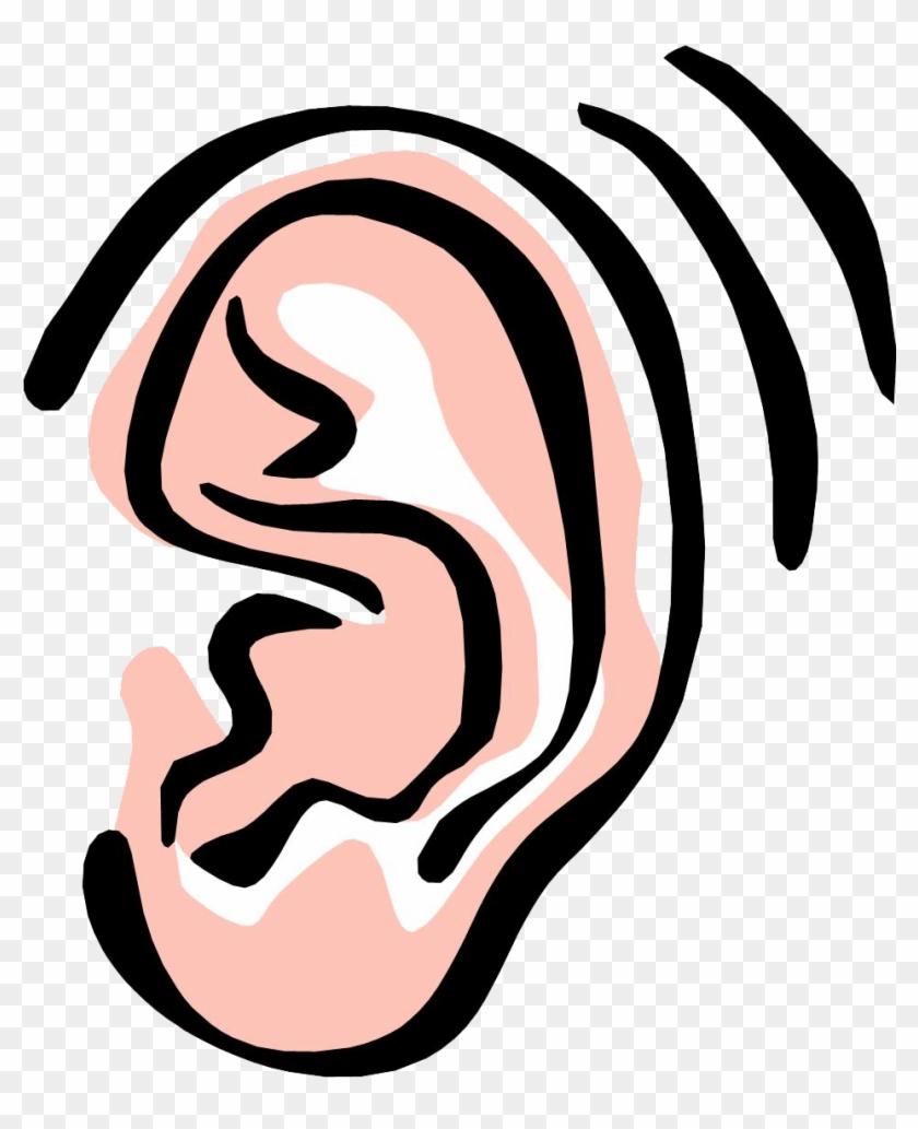 Ear Png Image - Listening Ear Clip Art #24039
