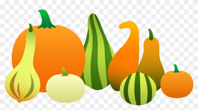 Autumn - Clip Art Fall Gourds #24102