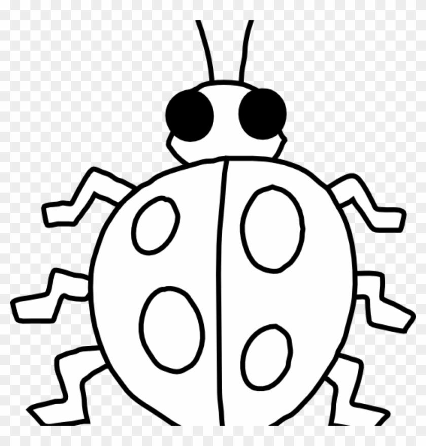 Ladybug Outline Ladybug Clip Art At Clker Vector Clip - Insect Worksheet For Preschoolers #24162