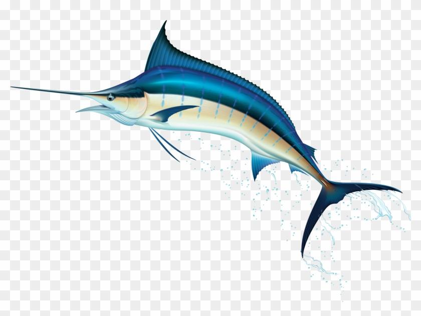 Swordfish Png Clip Art Best Web Clipart - Swordfish Clipart #24218
