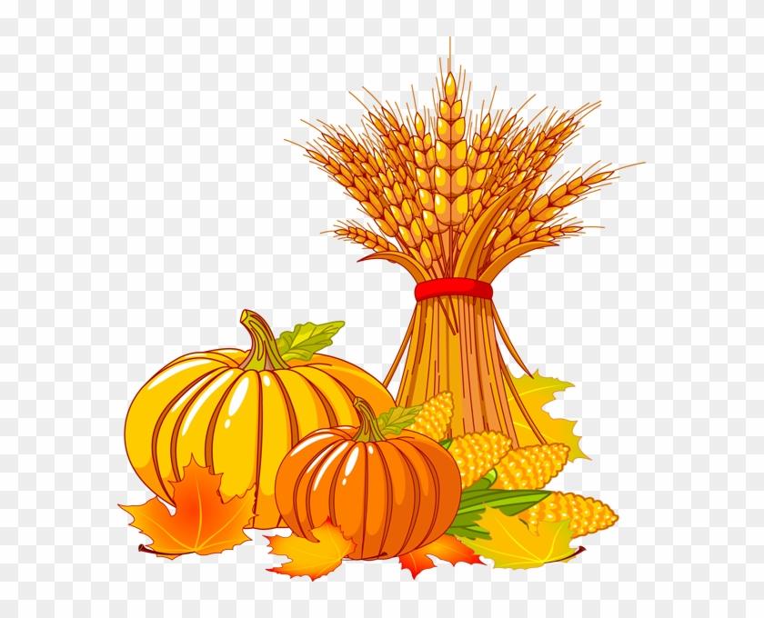 Pumpkin Wheat And Corn Clip Art Clipart - Fall Clipart #24266