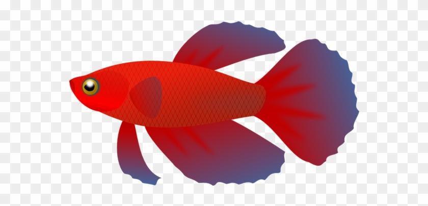 No Fish Cliparts Free Download Clip Art Free Clip Art - Fish Clip Art Transparent Background #24447