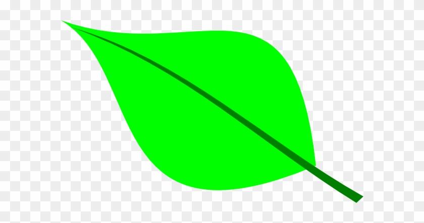 Small Leaf Clip Art - Green Leaf Clip Art #24550