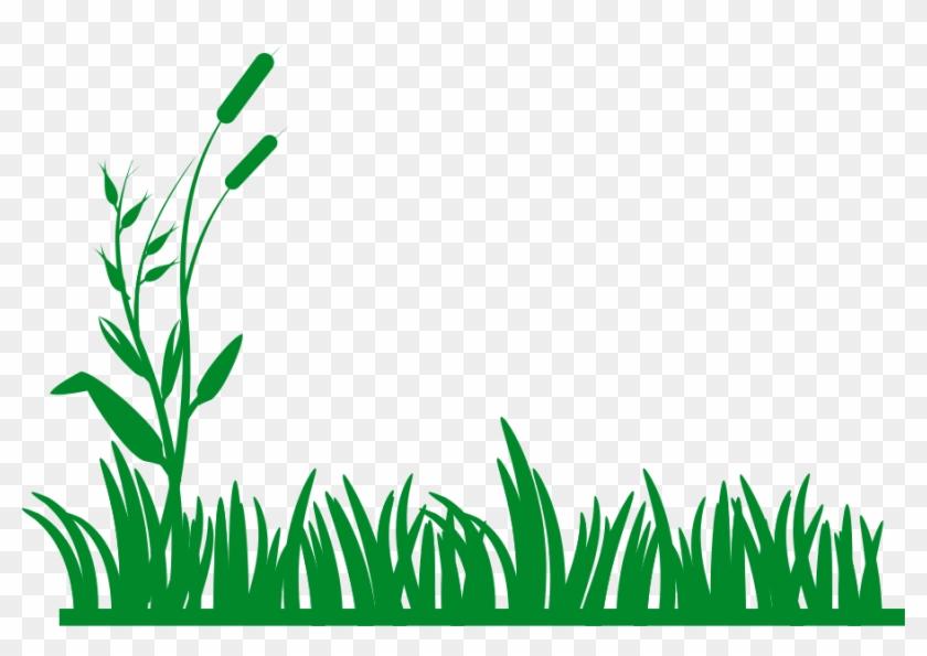 Meadow Clip Art At Clker - Meadow Clip Art #24901