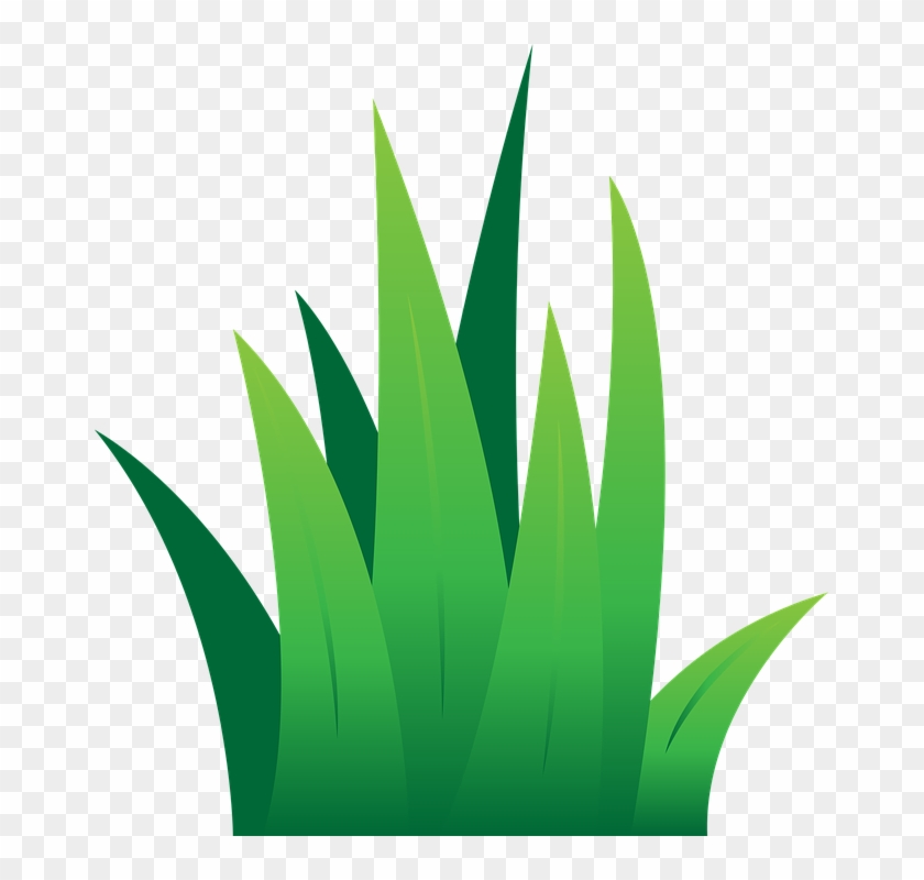Green Grass Clip Art Lawn Green Grass Free Vector Graphic - Illustration #24903