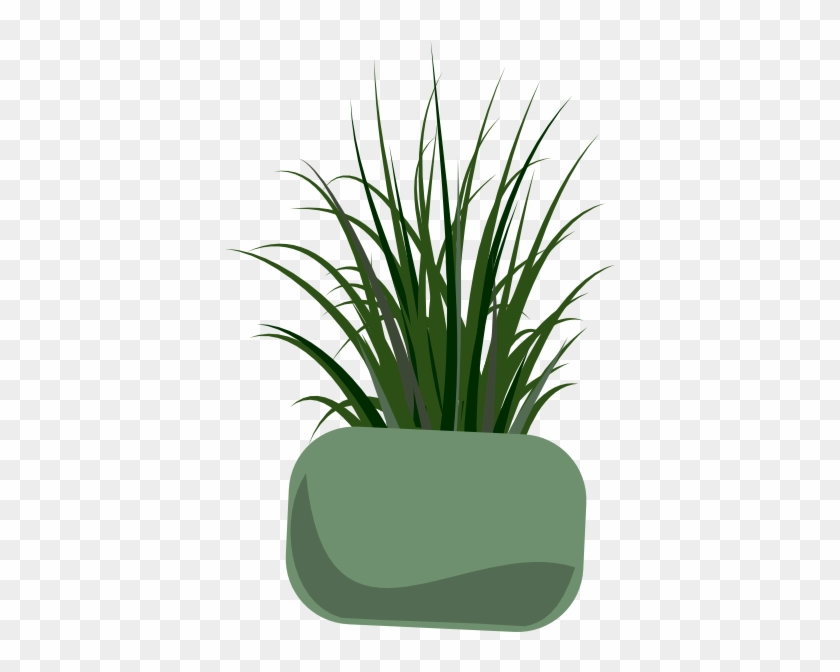 Grass Plant Clip Art #24979