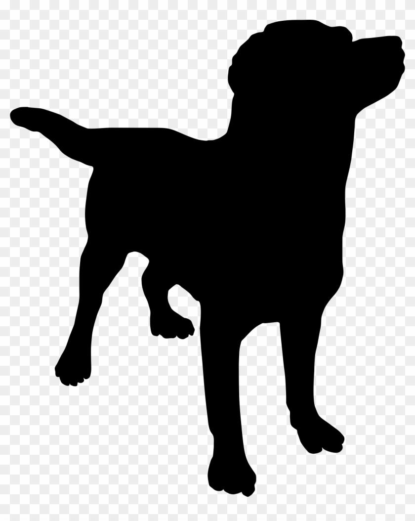 Clipart Info - Labrador Retriever Shower Curtain #25116
