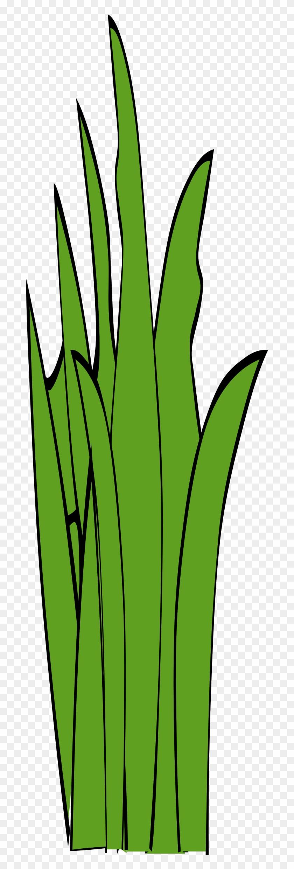 Big Image - Blade Of Grass Clip Art #25119