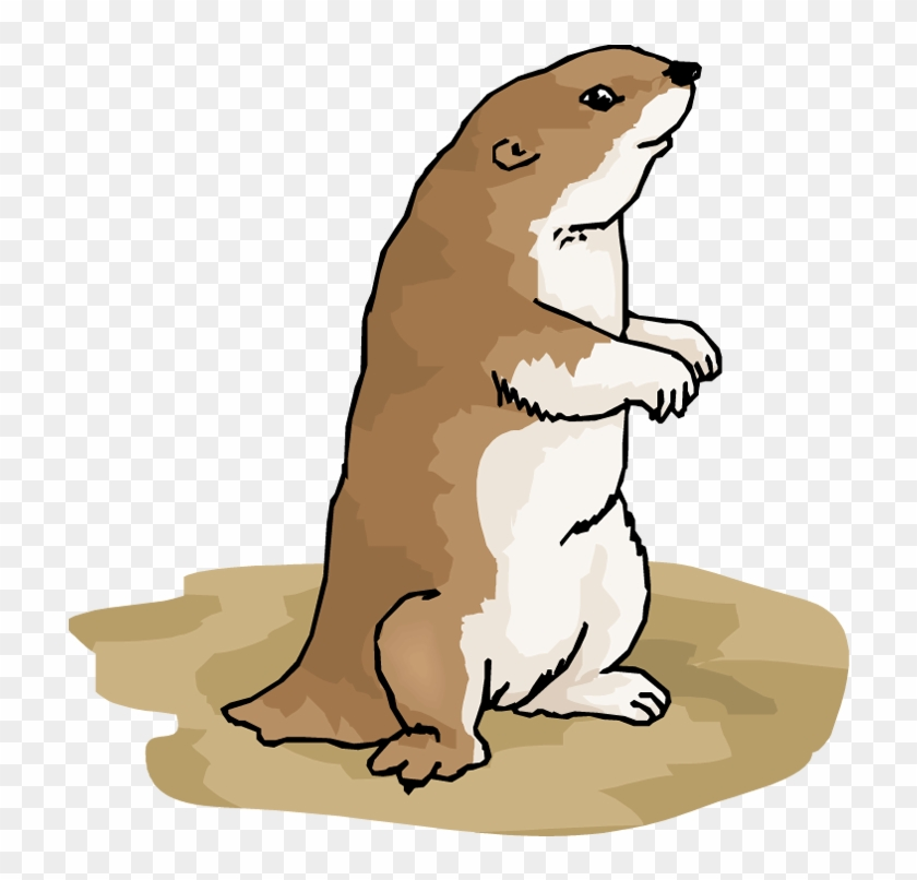 Prairie Dog Clipart - Gopher Coloring Page #25139