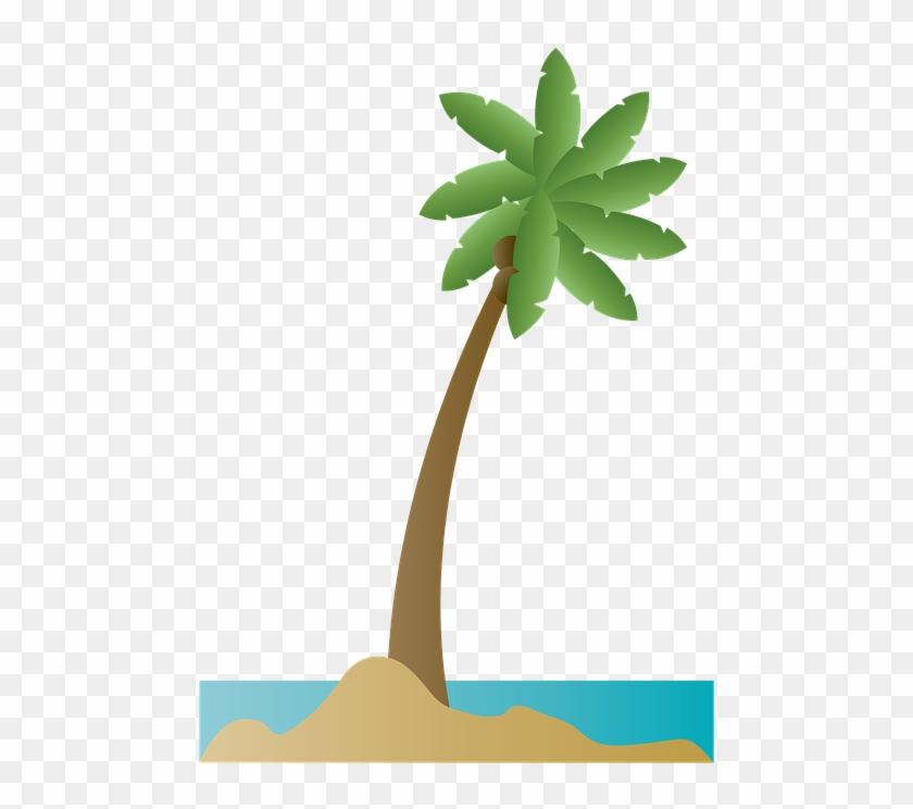 Palm Tree Palm Coconut Beach Summer Ocean Sea - Playa Ilustracion Png #25167