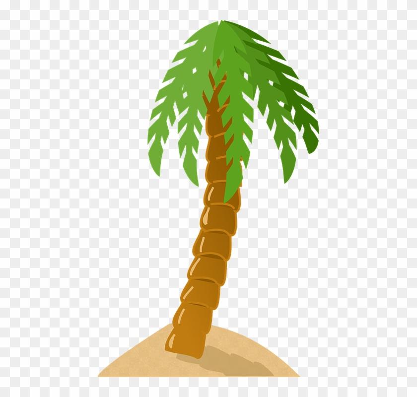 Palm Tree Exotic Tropical Island Green Sand Beach - Palm Tree Clip Art #25179