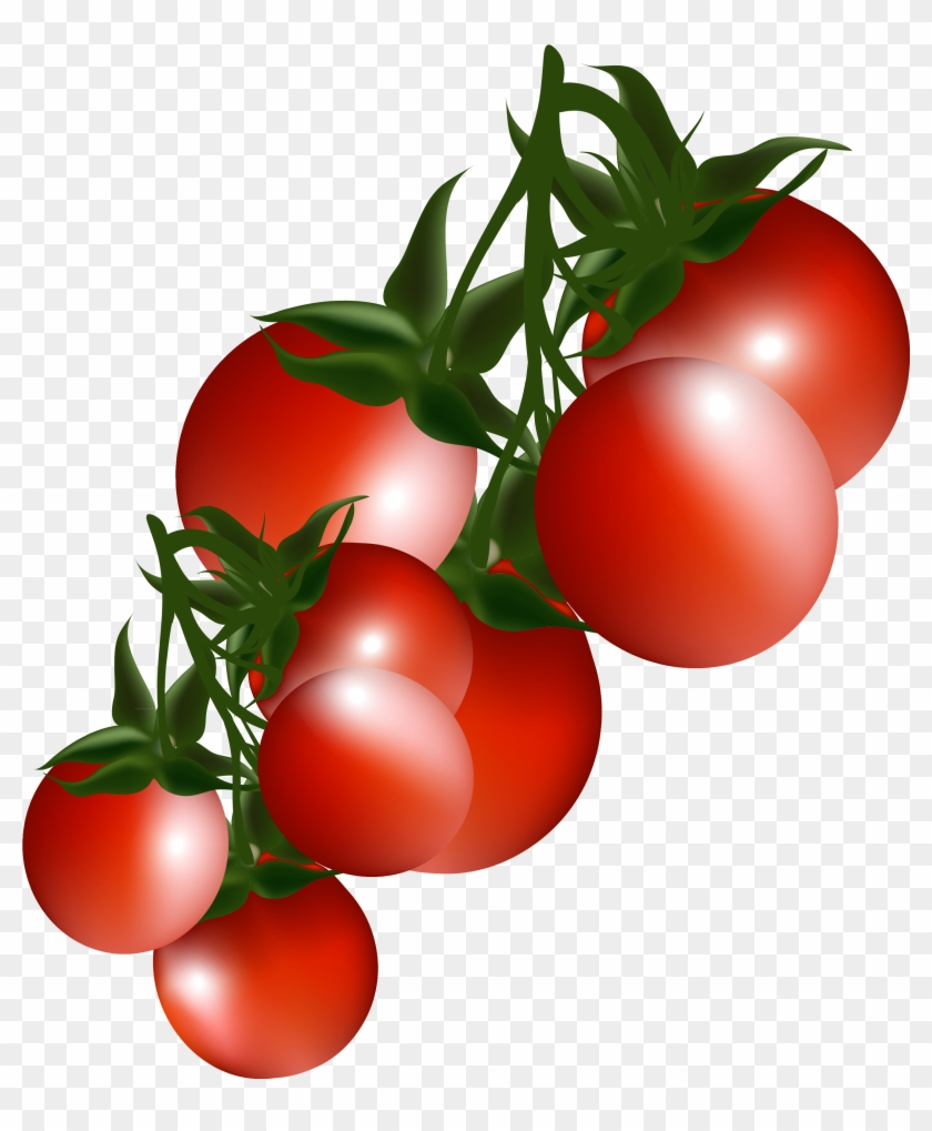 Tomatoes Clip Art - Clipart Tomatoes #25191