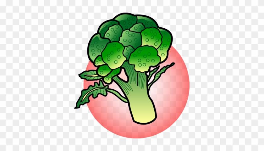 Broccoli - Broccoli Clipart #25202