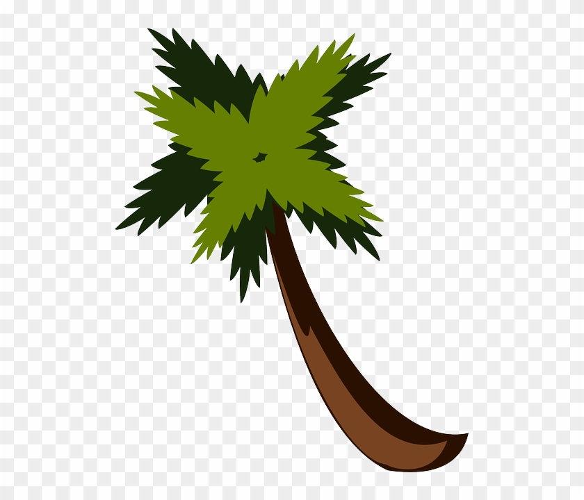 Vacation Palm Tree, Beach, Jungle, Palm, Leaves, Vacation - Hojas De Sleva Png #25317