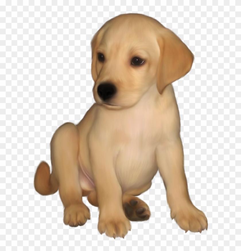 Labrador Retriever Clip Art - Golden Retriever Puppy Clipart #25319