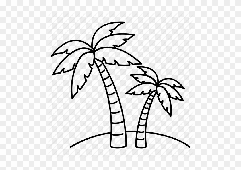 Palm Tree Line Drawing Beach Palm Tree Drawing Free Transparent