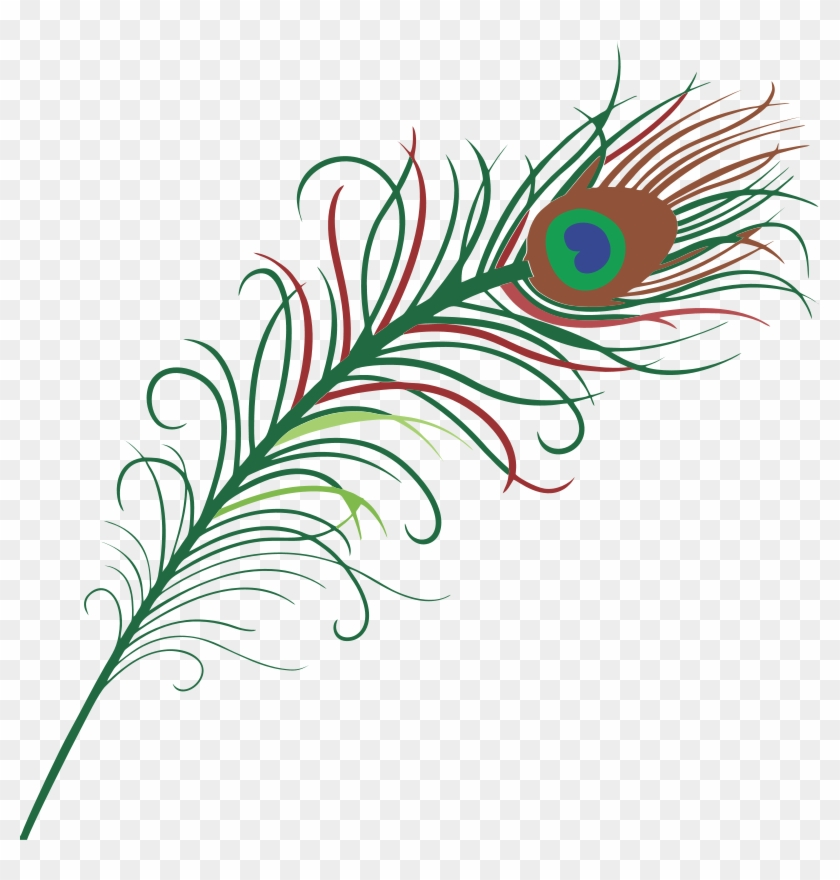 Peacock Clipart - Transparent Background Peacock Feather #25386