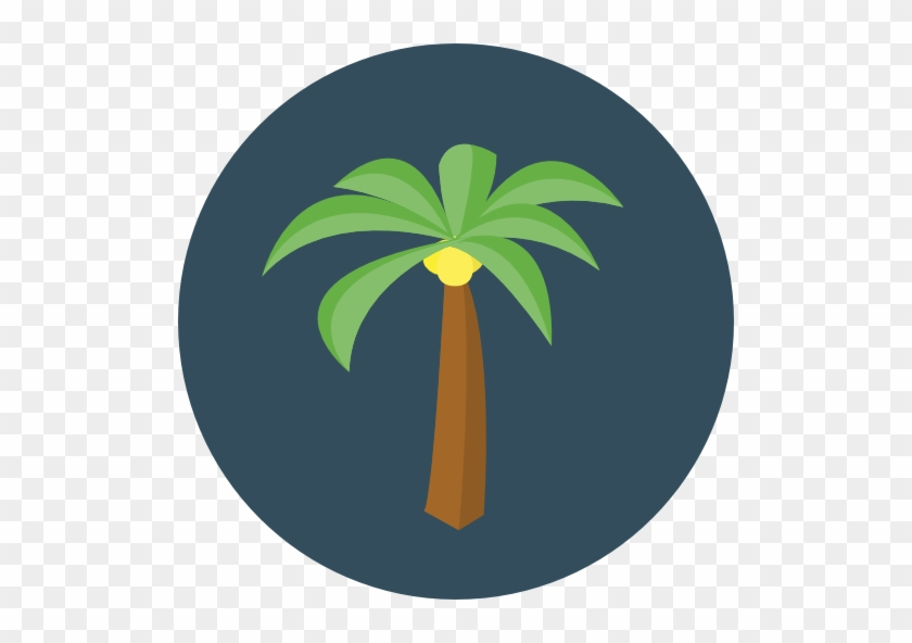 Size - Palm Trees #25399