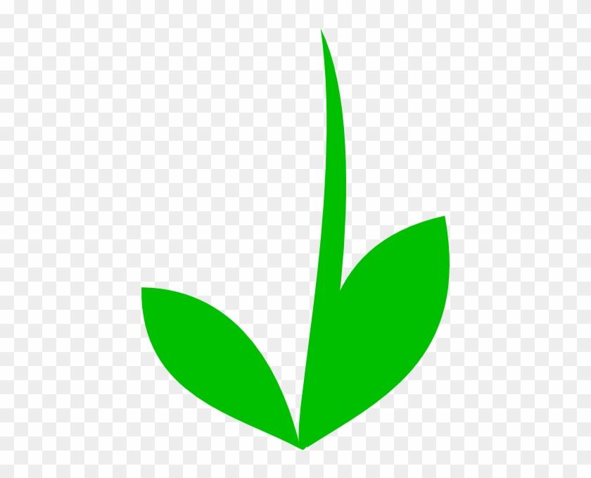 Grass Clip Art - Flower Stem Template #25603