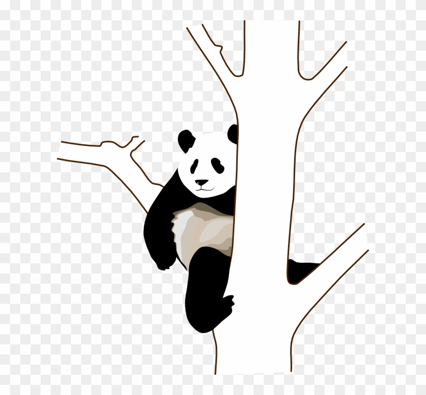 Panda On A Tree Clipart #25783