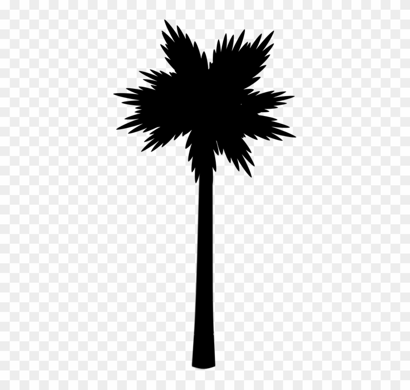 Palm Beach Tropic Silhouette Black - Palm Tree Clip Art #25801