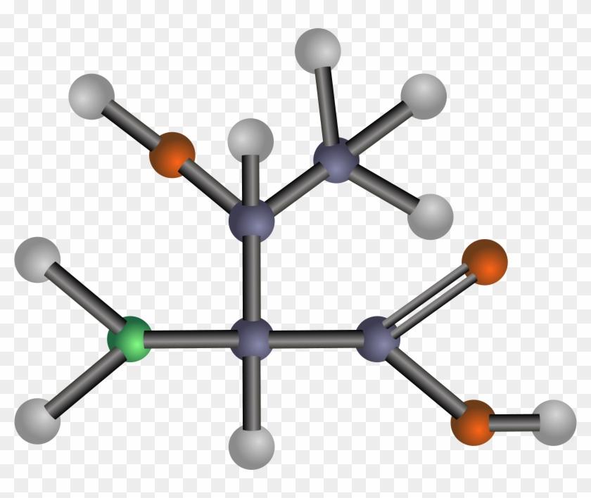 Amino Acids: Biochemistry And Applications #25897