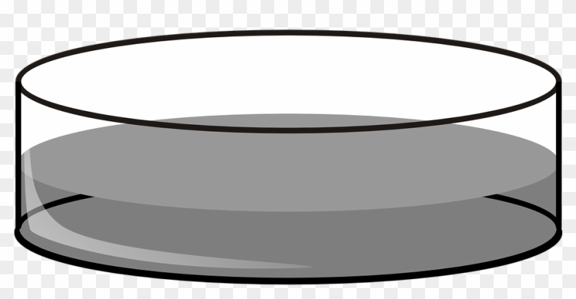 Petri Dish Deep Lab Fluid Grey Chemistry - Petri Dish Black And White #26125