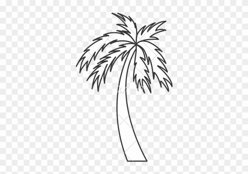Black And White Palm Tree Travel Beach Icon - Black And White Palm Tree #26291