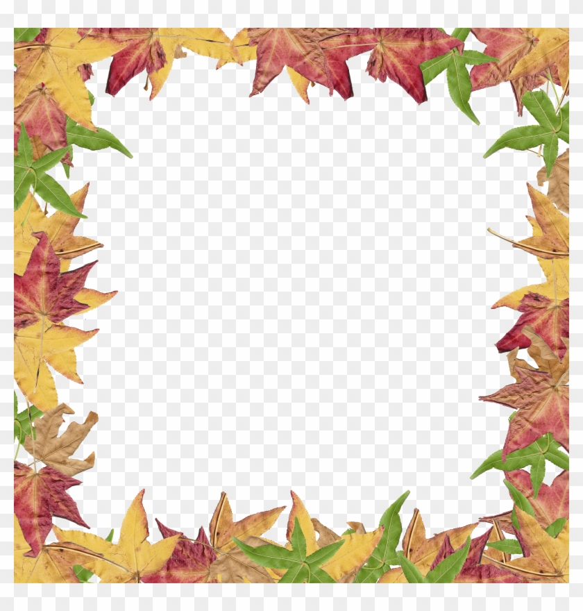Free Fall Borders Download Clip Art On Png - Creative Borders #26675