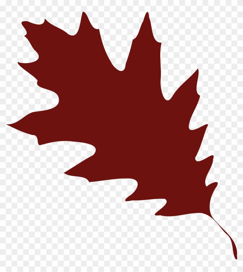 Orange Fall Leaves Clip Art Clipart Free Download - Red Oak Leaf Clip Art #26835