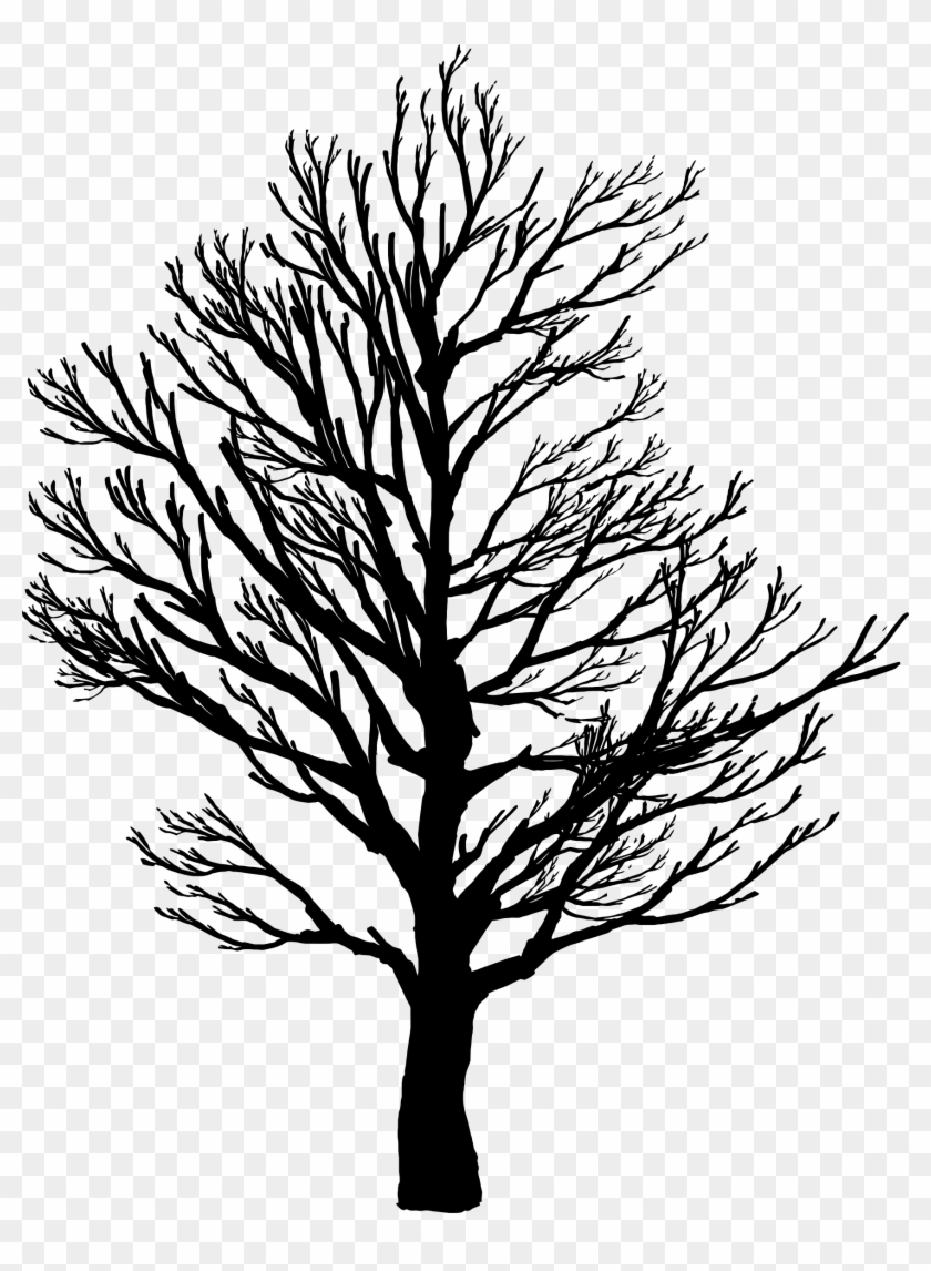 Tree Silhouette 2 - Screws Us Up Most In Life #26910
