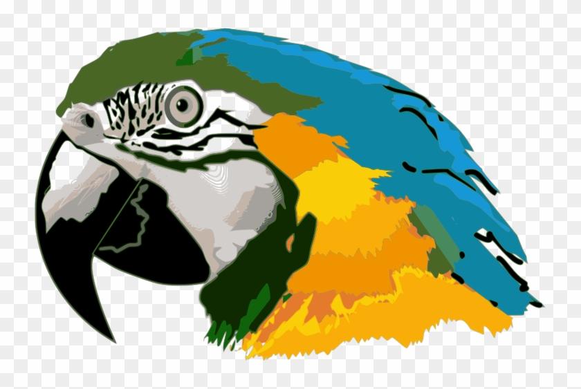 blue macaw clipart parrot head clip art free transparent png rh clipartmax com scarlet macaw clipart scarlet macaw clipart