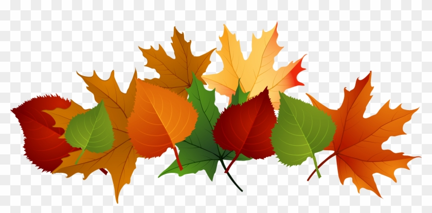 Transparent Autumn Clipart Collection - Fall Leaves Transparent Background #167993