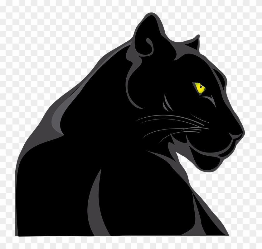 panther hewan kucing animal pantera png free transparent png clipart images download panther hewan kucing animal pantera