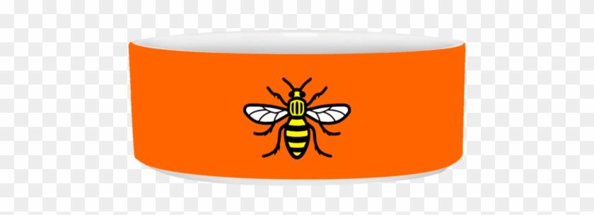 Manchester Bee Pet Bowl - Manchester Bee Flex Fit Twill Baseball Cap #918993