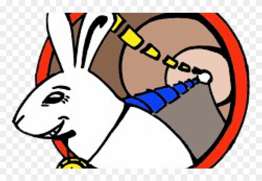 Read Full Story - White Rabbit Cern #920130