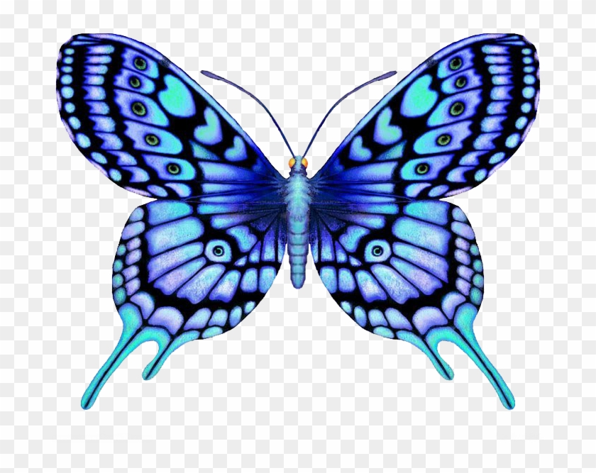 Butterfly Tattoo Large Blue Color - Butterfly Designs #925171