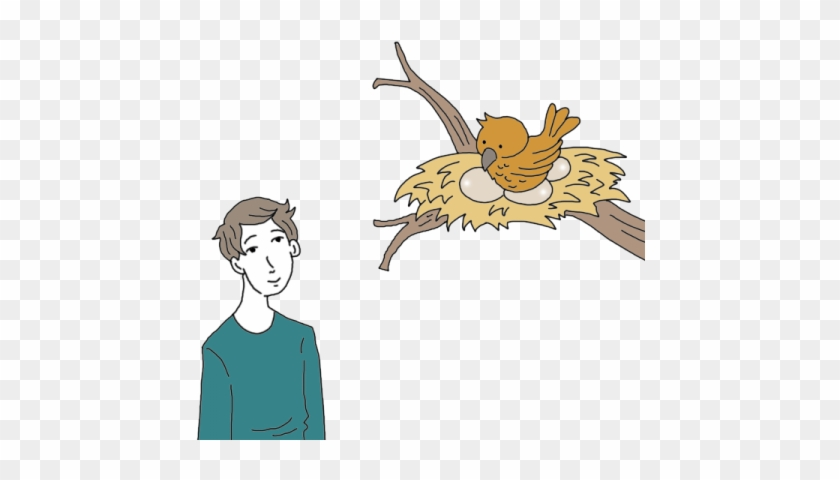 Birds Nest Tea Leaf Dictionary - Bird Nest #935642