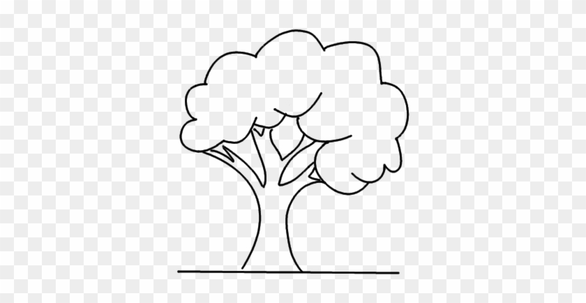 How To Draw A Simple Tree Drawing Free Transparent Png Clipart Images Download
