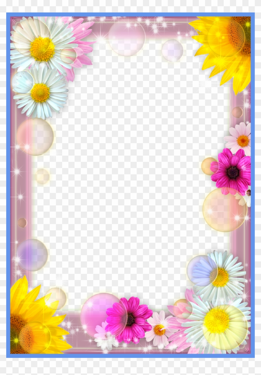 Fascinating Flower Photo Frame Summer Mood Png Fondos - Daisy - Free ...