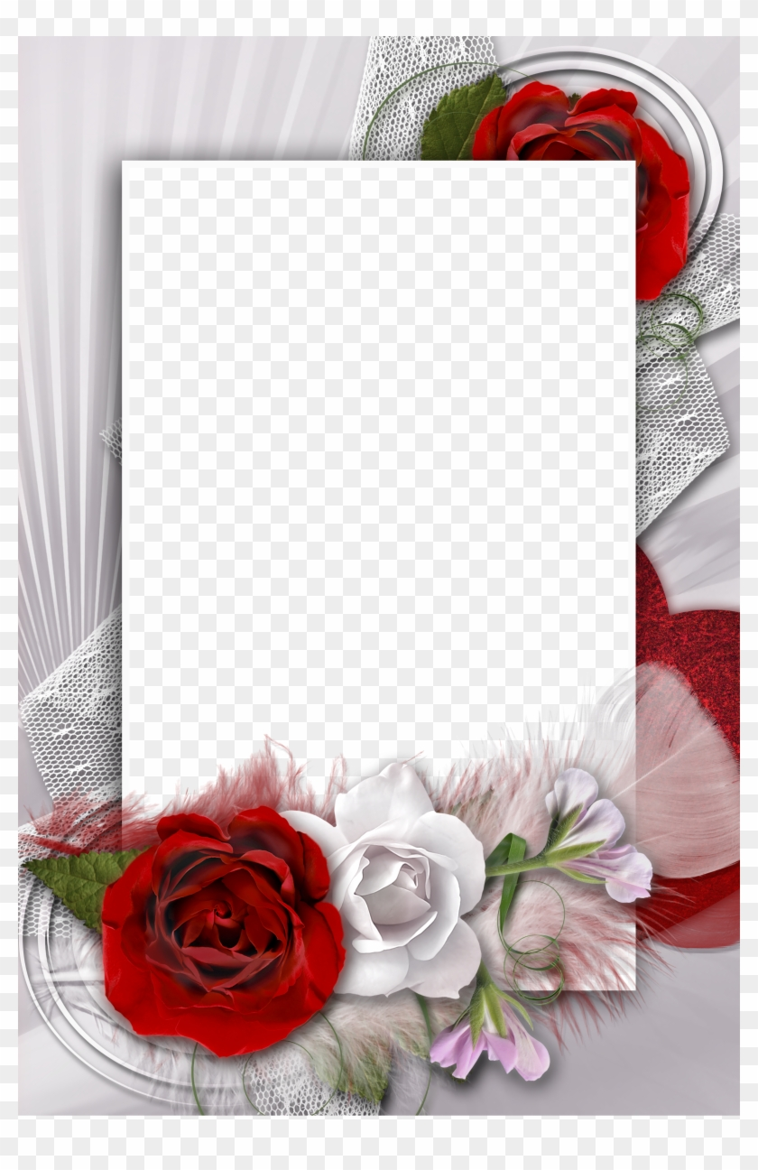 Transparent Romantic Frame With White And Red Rose - Red Rose Frame ...