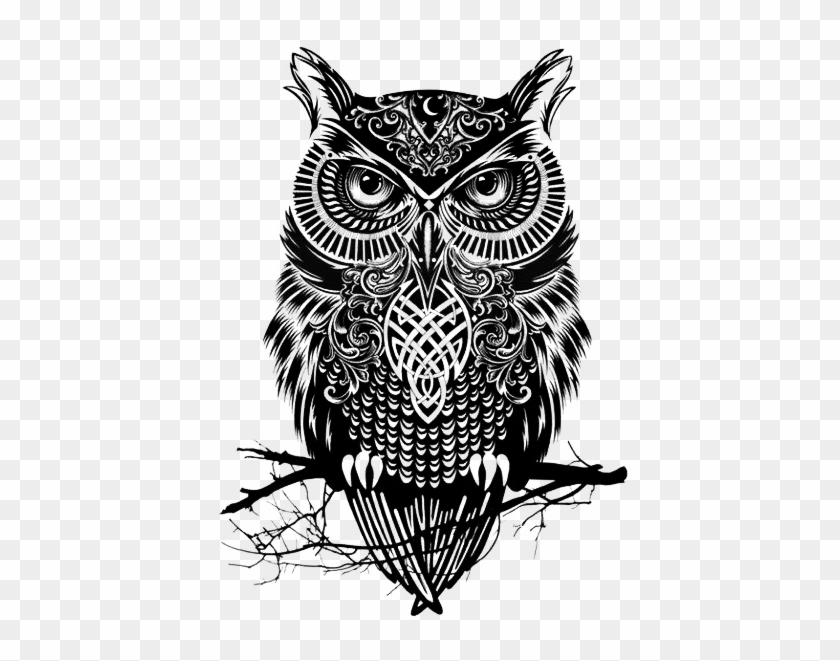 41 Images About Owls On We Heart It - Black And White Owl Drawing #940160